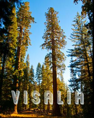 Visalia-header-mexcellent
