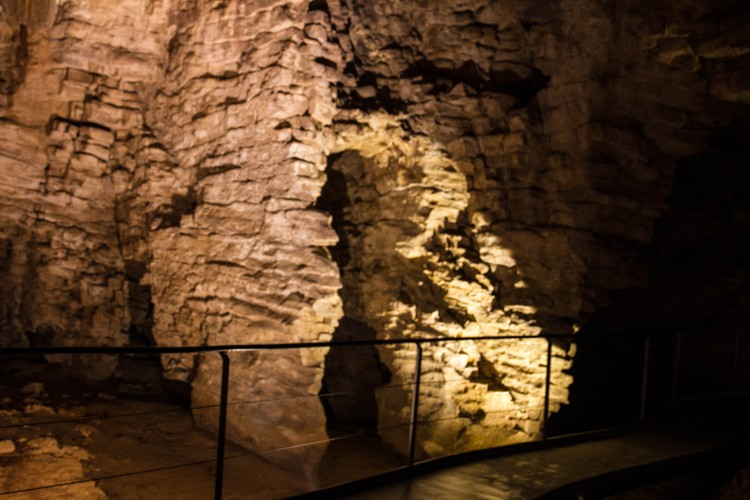 Waitomo 12 cave walk