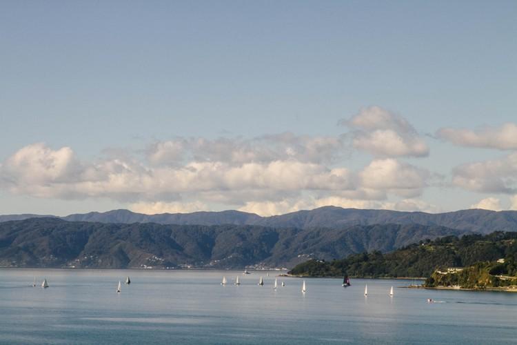 Wellington 09 harbour view