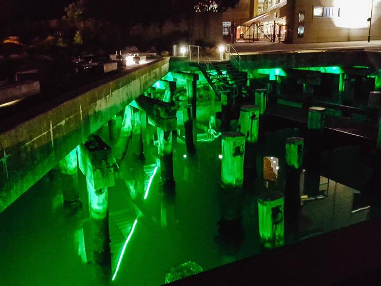 Wellington under harbour green lights